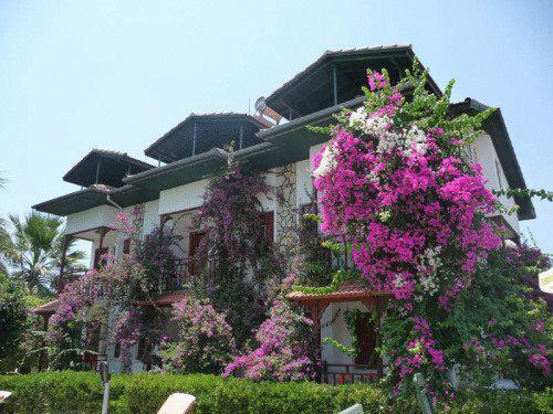 BC Alya Hotel