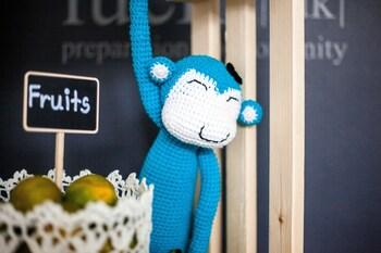 Blu Monkey Bed & Breakfast