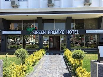 Green Palmiye