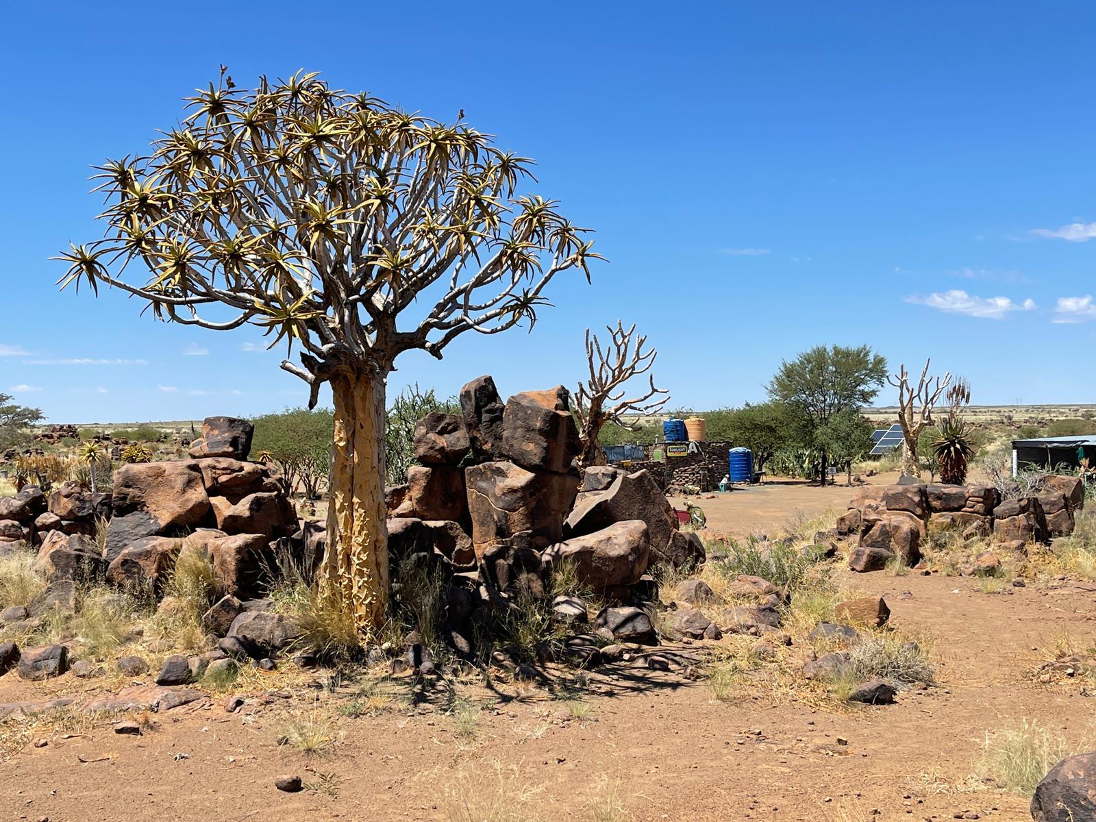 Namibia - Private Tour