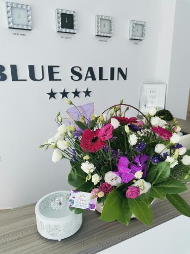 Vila Blue Salin ****