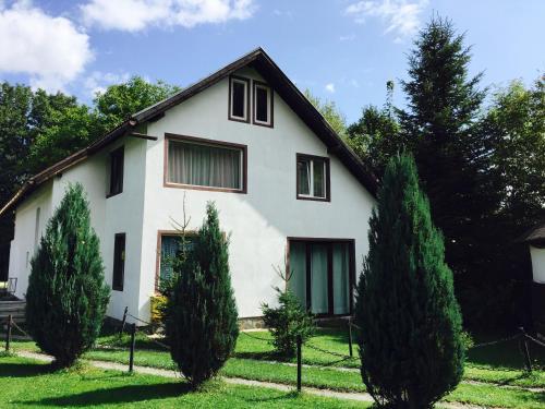 Casa Codrin