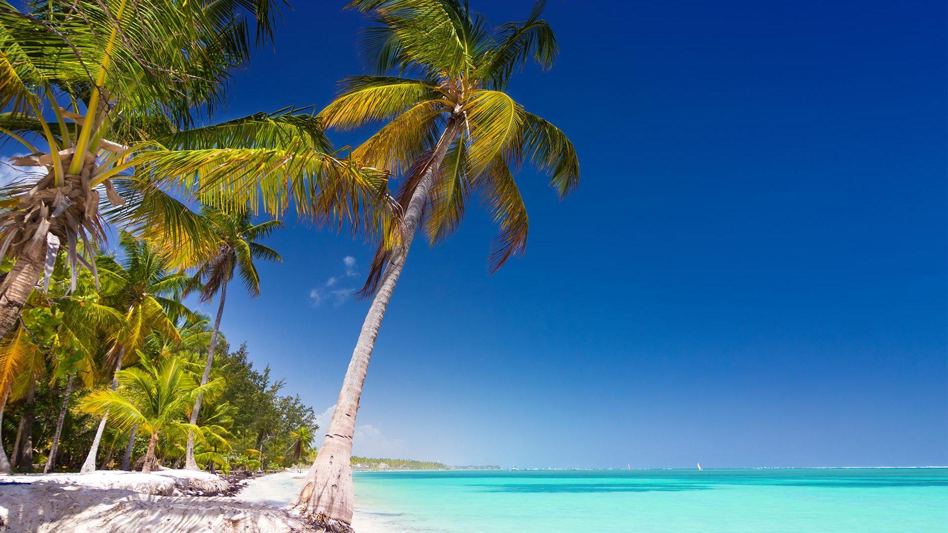Oferta Speciala - Sejur plaja Punta Cana, Republica Dominicana, 9 zile - 6 iulie 2021