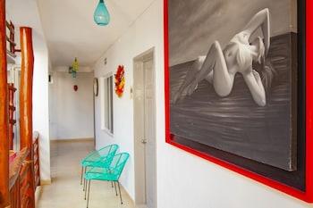 Mestizo Gallery