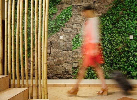 MENEL THE TREE HOUSE HOTEL (Limenaria)