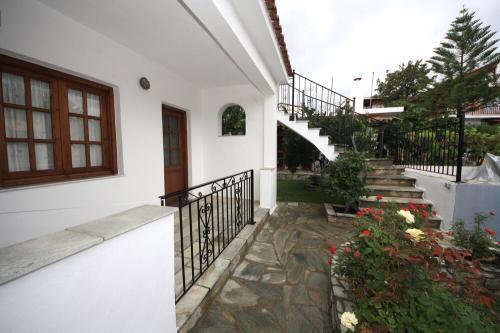 Amalia Studios