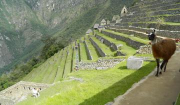 Circuit Peru, 16 zile - aprilie 2021