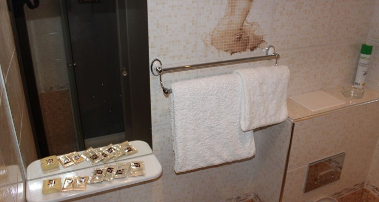 TarLeon Mini-hotel