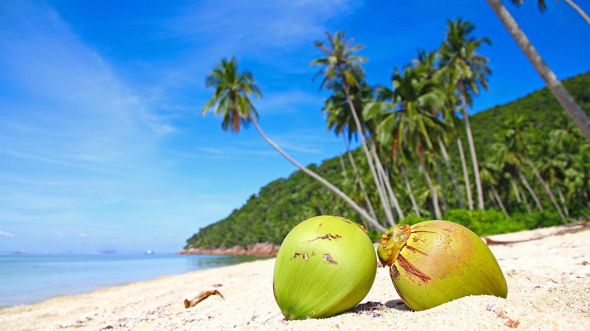 Sejur plaja Punta Cana, Republica Dominicana, 9 zile - 17 noiembrie 2021