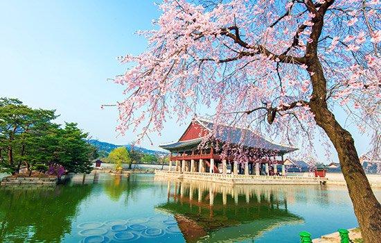 Coreea de Sud & Insula Jeju 2022