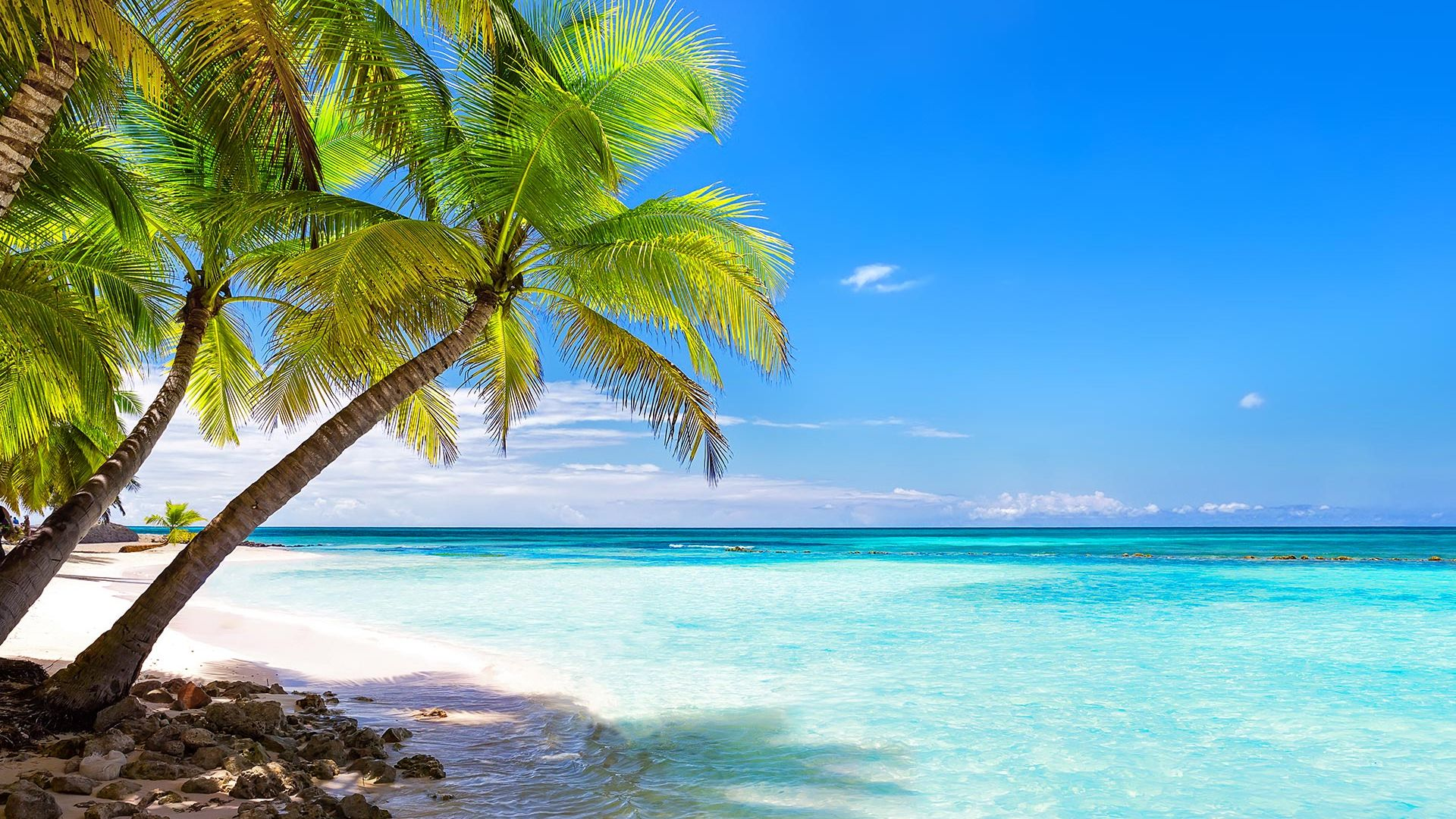 Sejur plaja Iberostar Hotels & Resort Punta Cana, 9 zile - 22 august 2021