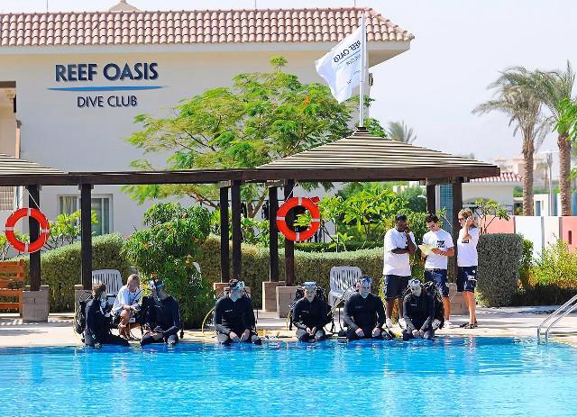REEF OASIS BLUE BAY