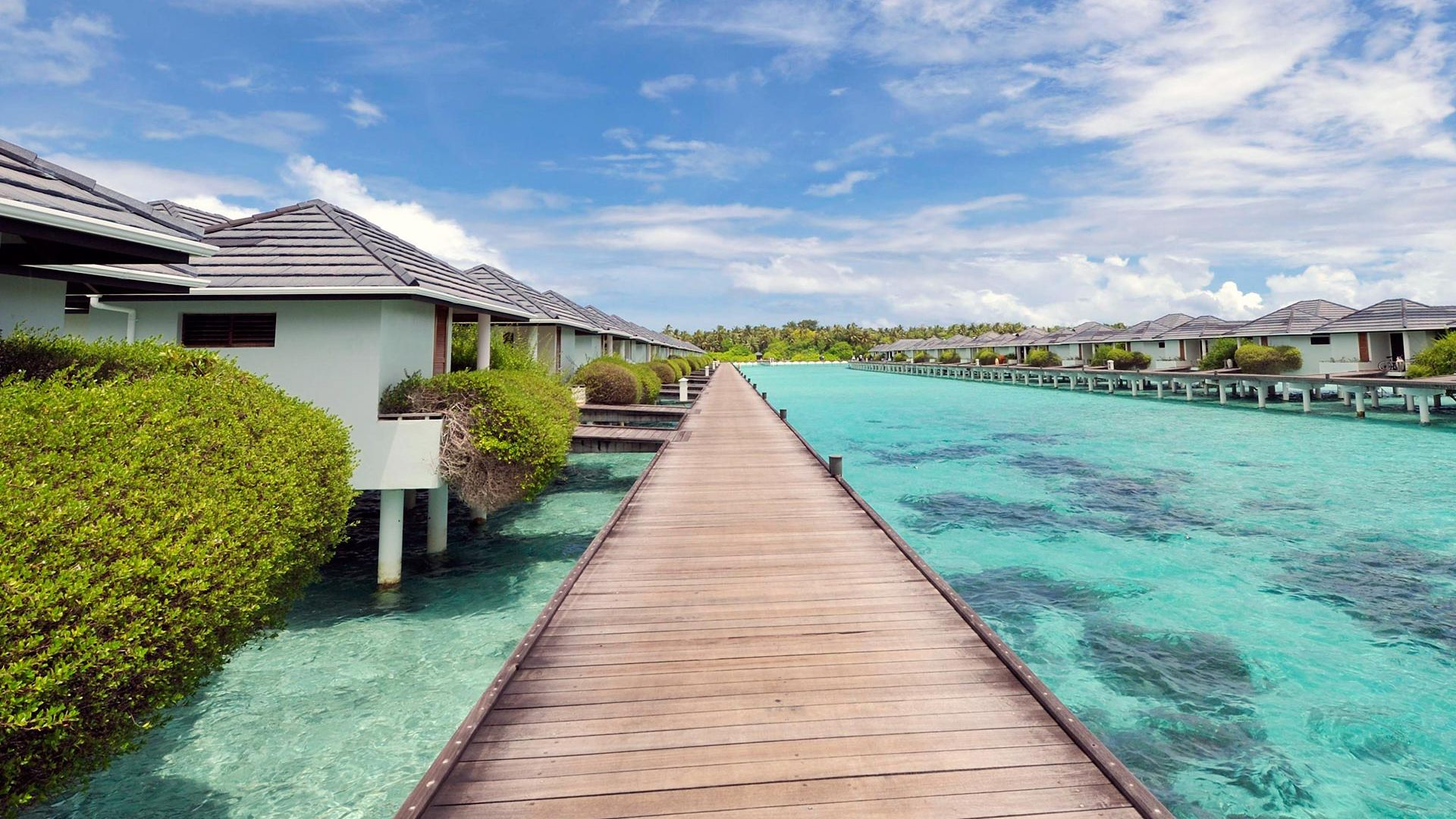 Sejur plaja Maldive, 12 zile - ianuarie 2022