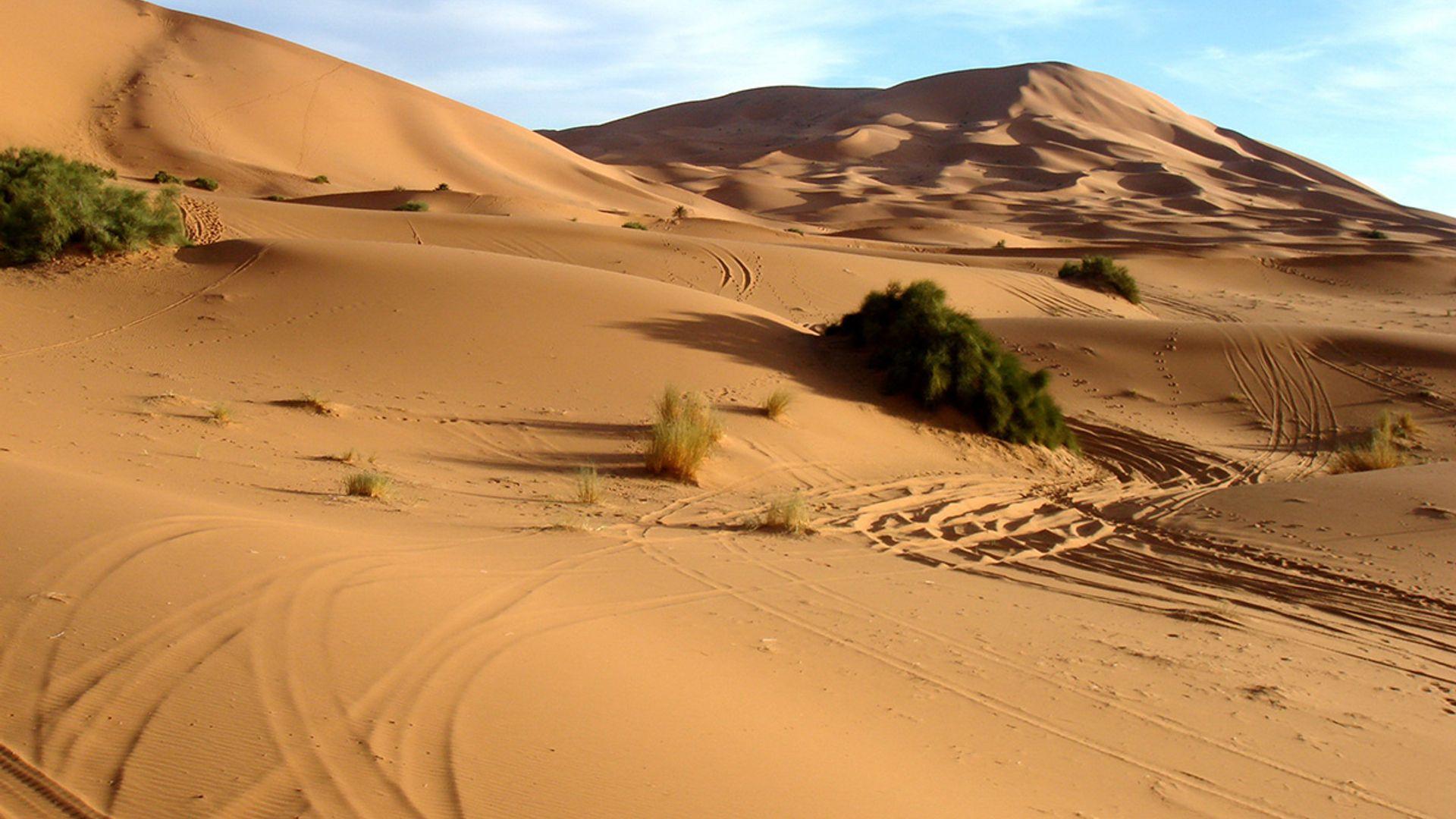 Paste 2022 - Circuit de grup charter - Essential Maroc, 8 zile