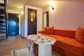 Apartment Poiana Stechil