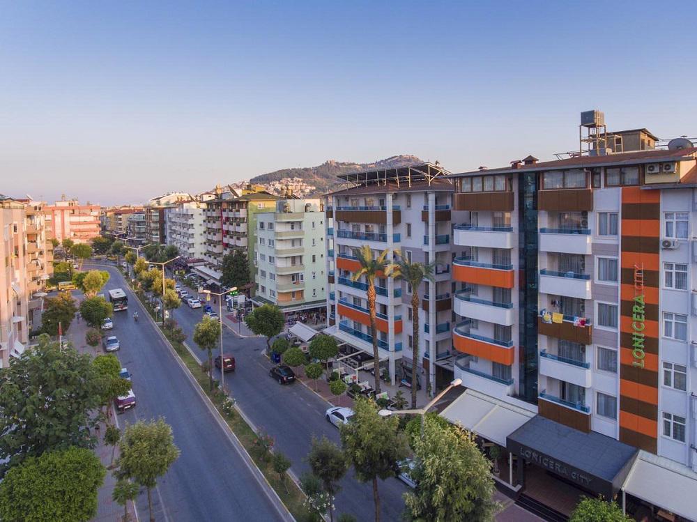 LONICERA CITY KLEOPATRA