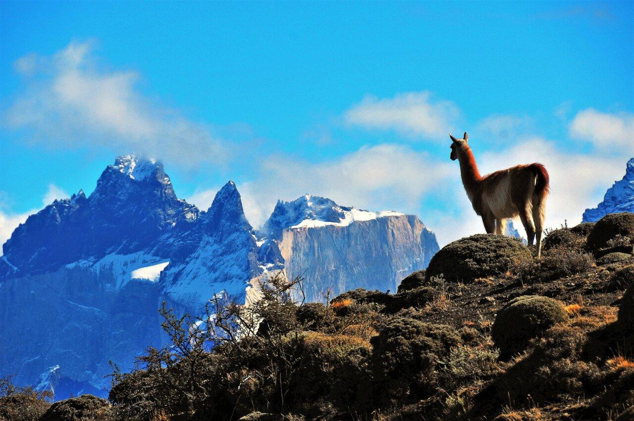 Chile – Insula Paștelui & Deșertul Atacama & Patagonia - Argentina Los Glaciares & Țara de Foc