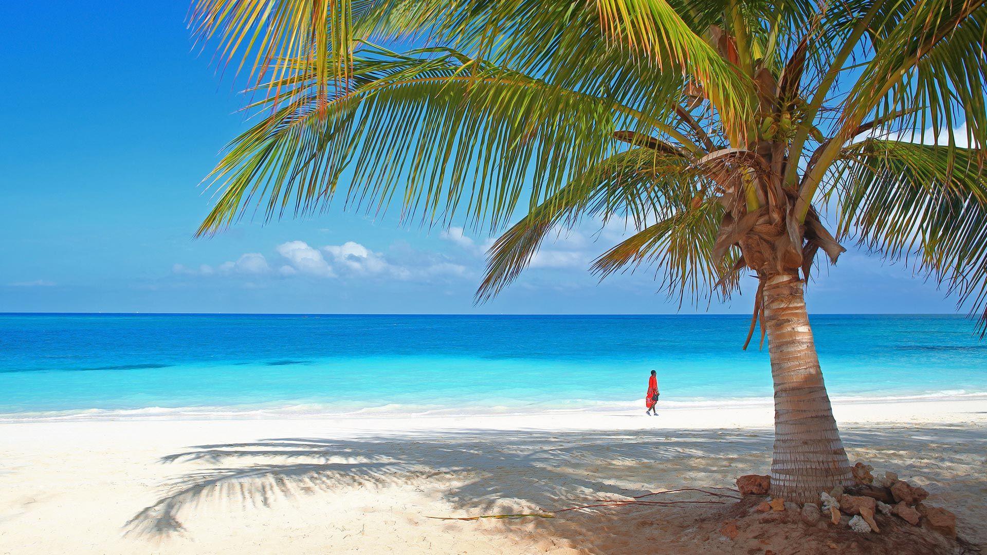 Sejur charter Diani Beach, Kenya, 8 zile - august 2021