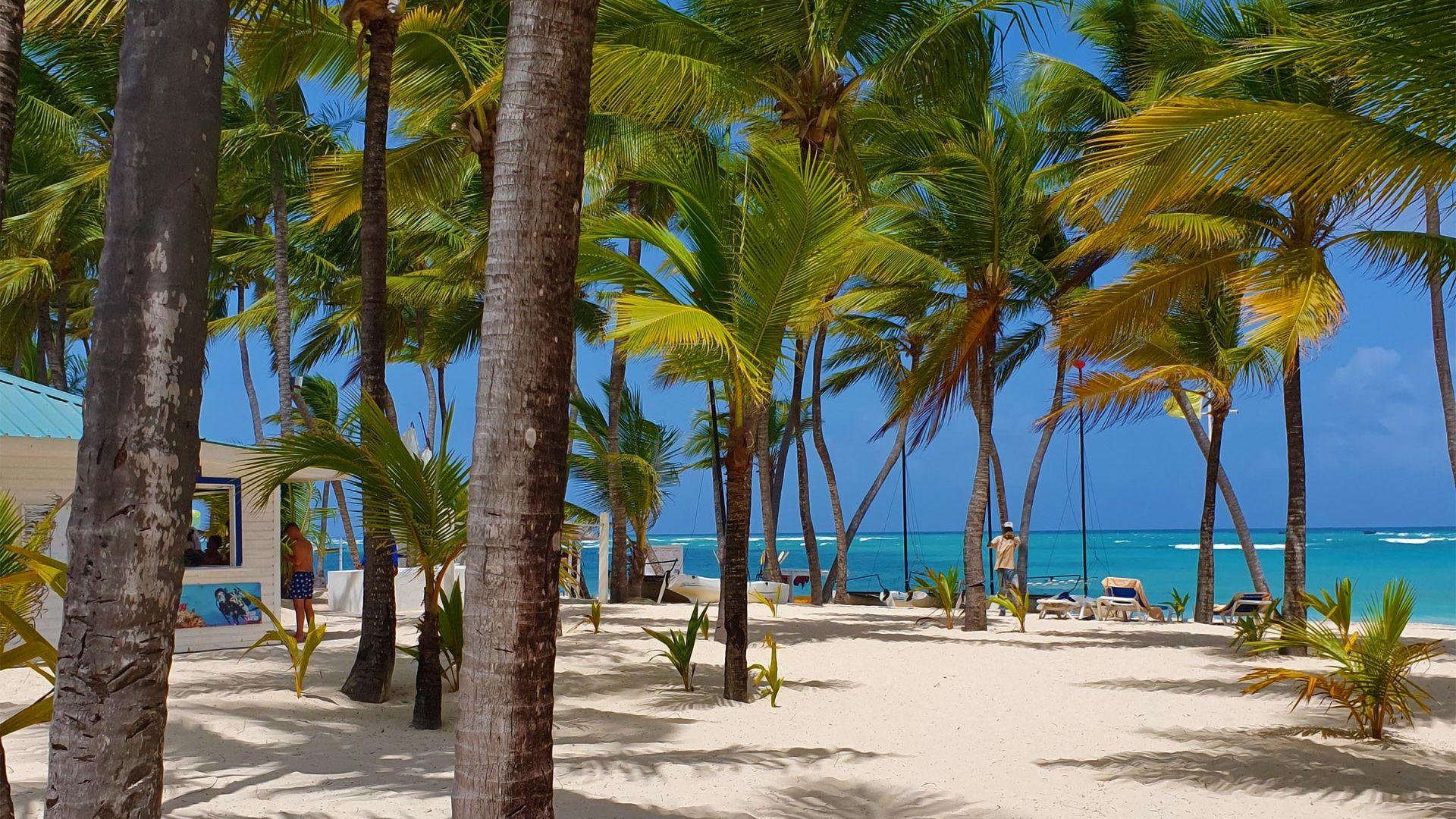Sejur plaja Barcelo Hotels & Resorts Punta Cana, 9 zile - 22 august 2021